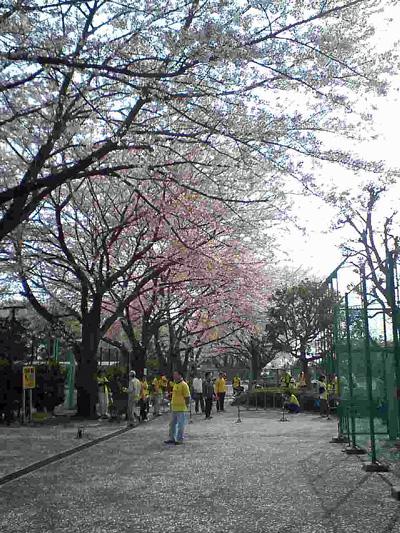20080407_3